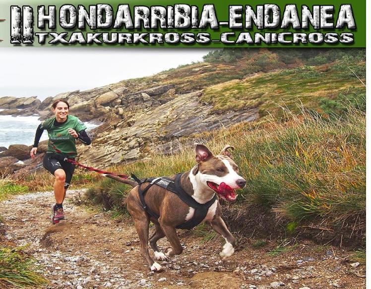canicross hondarribia